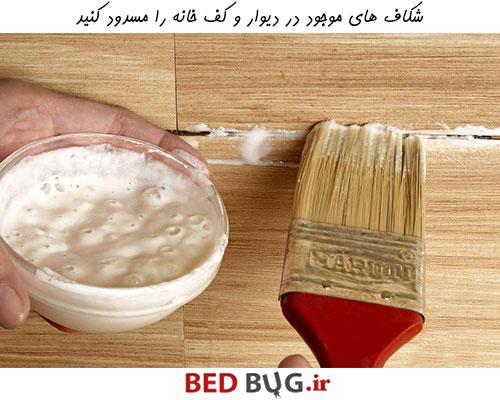 برای نابودی ساس شکاف های دیوار و کف خانه را مسدود کنید