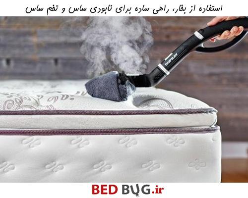 استفاده از بخار، راهی ساده برای نابودی ساس و تخم ساس