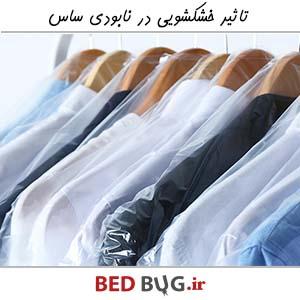 Dry Cleaner Bedbug 2