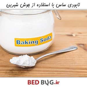 Get Rid Bedbug Baking Soda